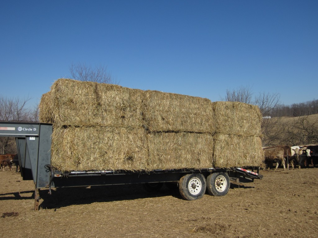 Trailer is almost all loaded up.
